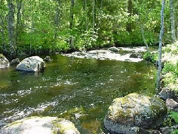 Ahvenkosken Rautalampi Rapids Fishing Permit kuva