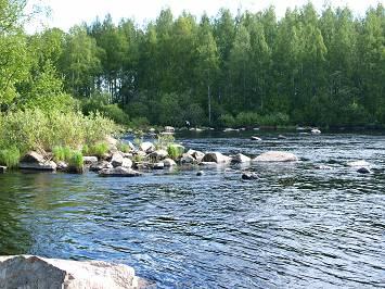 Riekonkosken and Muittarinkosken Rapids Fishing licences kuva