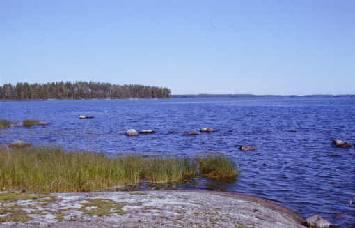 Jämsänjoen kalastuslupa kuva